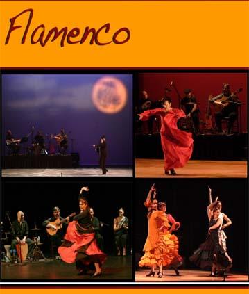 Flamenco Dancer 1